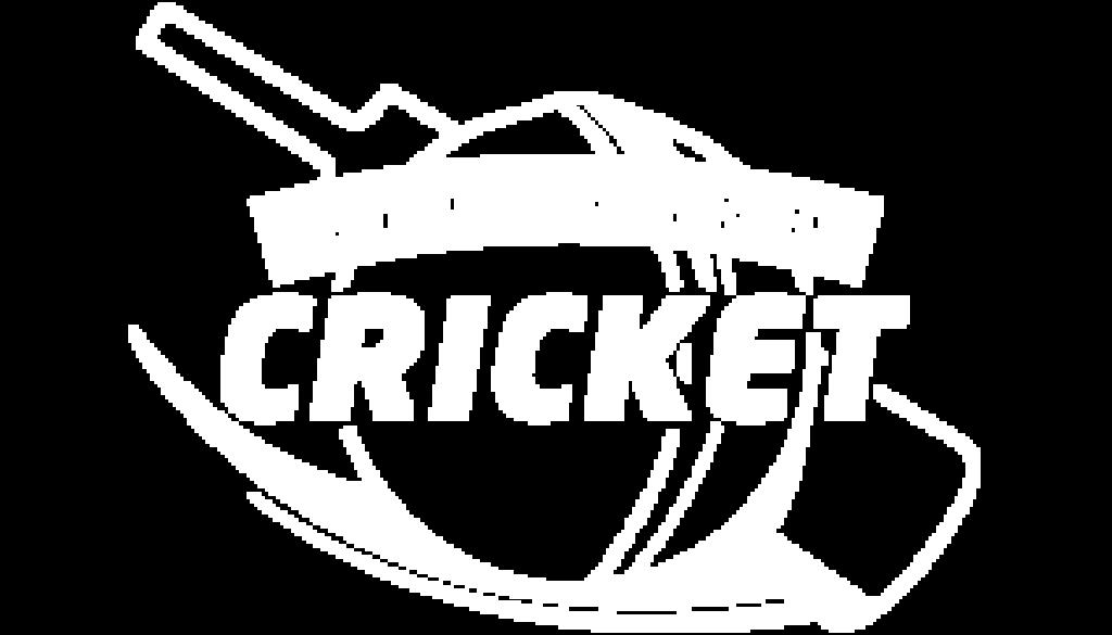 BackyardCricketIcon300