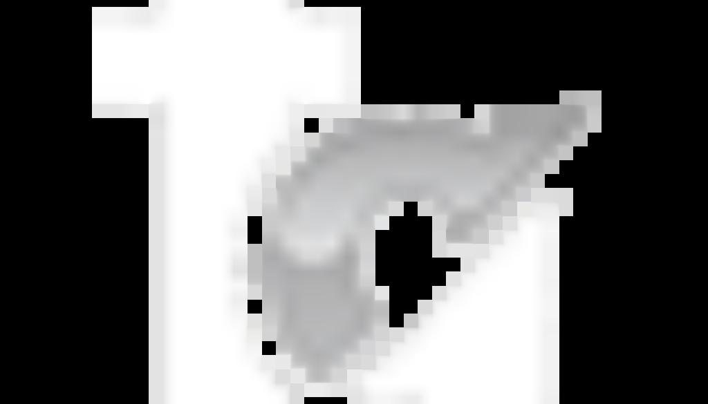 frankgullone.com logo